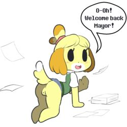 2016 all_fours animal_crossing anthro blush bottomless canine canine clothed clothing digital_media_(artwork) featureless_feet female hairband hi_res isabelle_(animal_crossing) itsunknownanon looking_at_viewer mammal mitten_hands nintendo no_underwear presenting pussy shih_tzu simple_background solo text upskirt video_games
