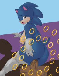 anus ass balls breasts female nipples penis pussy rule_63 sonic_(series) sonic_the_hedgehog spread_ass thighhighs vaginal_penetration vin4art