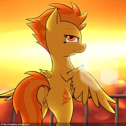 2016 amber_eyes anus ass bedroom_eyes clitoral_winking clitoris cutie_mark equine feathered_wings feathers female feral friendship_is_magic hair half-closed_eyes hi_res lens_flare looking_at_viewer looking_back mammal multicolored_hair my_little_pony neighday orange_hair outside pegasus pussy seductive solo spitfire_(mlp) two_tone_hair wings wonderbolts_(mlp) yellow_feathers