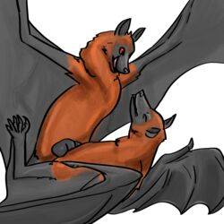 2018 5_toes anatomically_correct anatomically_correct_genitalia anatomically_correct_penis anvil_position balls bat bat_penis bat_wings betlv black_wings chest_tuft claws closed_eyes digital_media_(artwork) duo erection female feral feral_on_feral flying_fox fur happy happy_sex hi_res legs_up licking licking_lips looking_down looking_pleasured lying male male/female male_penetrating mammal membranous_wings nude on_back orange_body orange_fur penetration penis sex shaded simple_background toe_claws toes tongue tongue_out tuft vaginal_penetration vaginal_penetration white_background wings