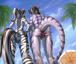 anal anal_sex anthro beach buttplug clothed clothing crossdressing daryabler duo equine girly hair hand_on_butt low-angle_view male mammal outside penetration scalie seaside sex_toy speedo standing swimsuit zebra