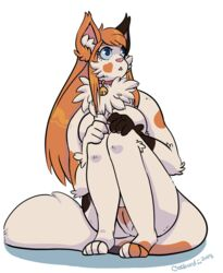 anthro breasts calico_cat feline feline female invalid_tag jellybeepcatburd mammal peachyjellybug pinup pose pussy sitting