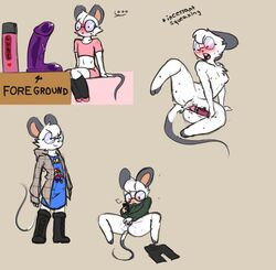 2017 anthro anus bare_chest big_ears blush boots chloe clothing dildo eyewear female footwear fur glasses hair honky_kat mammal masturbation mouse nipples open_mouth pussy rodent sex_toy squeaking sweat sweater underwear vibrator white_fur