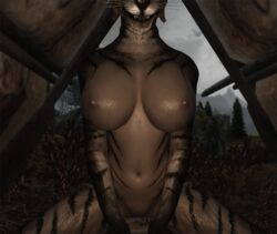 big_breasts boy_meets_girl cowgirl cowgirl_position feline furry girl outdoors picture png pov skyrim