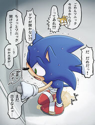 2009 blush green_eyes karlo male sonic_(series) sonic_the_hedgehog sweat tails text too_late translation_request urine watersports
