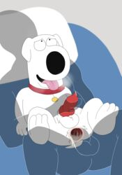2018 anal anal_sex animal_genitalia animal_penis anthro anus balls bed big_dom_small_sub brian_griffin canine canine_penis collar cum cum_in_ass cum_inside family_guy fur handjob human human_on_anthro interspecies looking_pleasured magzol male mammal orgasm penetration penis precum sex size_difference tongue tongue_out white_fur yaoi