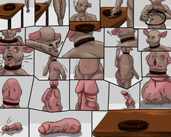 balls belt big_penis cock_transformation comic male mammal mouse penis rodent simple_background solo source_request transformation uncut unknown_artist what