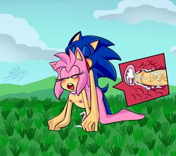 all_fours amy_rose anthro areolae ass barefoot bent_over blue_fur blue_hair blush breasts closed_eyes cum cum_in_pussy cum_in_uterus cum_inside cumshot doggy_style duo feet female from_behind from_behind_position grass hedgehog inflation internal looking_pleasured male mammal nino5571 nipples nude open_mouth penetration penis pink_fur pink_hair pregnancy pregnant pregnant_sex sega sex signature sonic_(series) sonic_the_hedgehog stomach_bulge straight tail thick_penis thighs tongue uterus vaginal_penetration vein veiny_penis x-ray