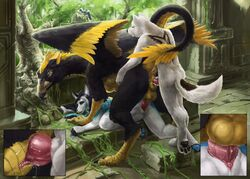 2018 anthro anthro_penetrating_feral avian balls beak canine ceylon claws feathered_wings feathers female feral feral_penetrating_anthro group group_sex gryphon herm herm/female herm/male hybrid intersex intersex/female intersex/male ithilwen male mammal nib-roc nude open_mouth penetration penis pussy runa216 sandwich_position sex smile story story_at_source threesome train_position vaginal_penetration vaginal_penetration wings zoophilia
