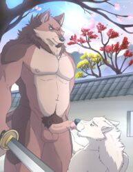 absurd_res angry anthro balls body_hair brown_fur canid canine canis castle cherry_blossom digital_media_(artwork) duo ears_back eyebrows facial_hair fangs fur goatee happy_trail hi_res humanoid_penis inner_ear_fluff katana licking male male/male mammal melee_weapon morning multicolored_fur muscular muscular_male navel neck_tuft nipples nude oral outside pecs penis penis_lick penis_on_tongue pink_nipples plant precum precum_on_tongue pubes sex standing story story_in_description submissive sword teeth tongue tongue_out tree tuft uncut unpopularwolf weapon wolf