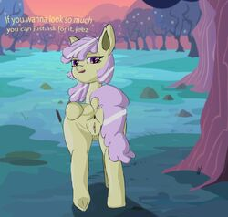 bartstarter before_sex female female_focus forest my_little_pony pink_eyes pink_fur spread tagme teasing text wet_pussy