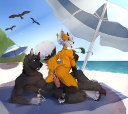 2019 anthro anthro_on_anthro balls bastika black_fur canid canine canis day detailed_background digital_media_(artwork) female fox fur kneeling lying male male/female mammal on_back outside penis pussy sky smile wolf yumich