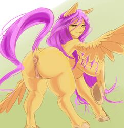 animal_genitalia ass captain_noisy equid equine female fluttershy_(mlp) friendship_is_magic hair horse mammal my_little_pony pink_hair pony pussy smile solo wings