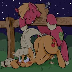 2014 anal anal_sex animal_genitalia applejack_(mlp) big_macintosh_(mlp) blonde_hair cum cum_inside cutie_mark duo earth_pony equine erection excessive_cum female feral freckles friendship_is_magic fur green_eyes hair horse horsecock incest inflation inflation male mammal mcsweezy my_little_pony orange_fur penetration penis pony red_fur sex sibling