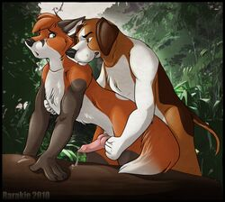 copper disney rarakie the_fox_and_the_hound todd