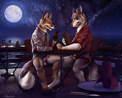 2009 2boys alcohol anthro balls bottomless canine canine_penis couple date eye_contact fox fur furry furry_only hindpaw looking_at_another male moon night penis public romantic shirt sitting stars tail taurin_fox tie wine